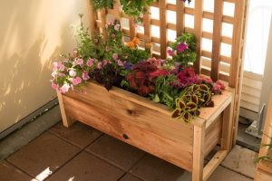 Planter from Real Cedar